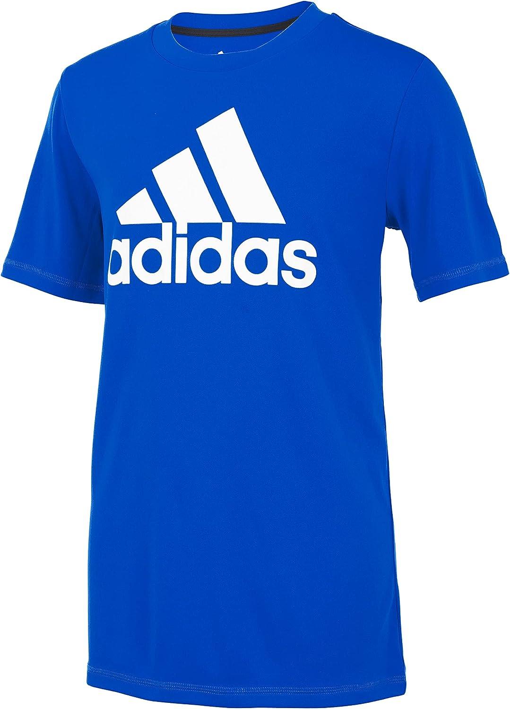 adidas Boys Size Short Sleeve AEROREADY Performance Logo Tee T-Shirt, Team Royal Blue, Large (14/16 Plus)