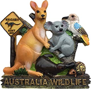 Australia Wildlife 3D Refrigerator Magnet Travel Sticker Souvenirs,Home & Kitchen Decoration Australia Fridge Magnet from China