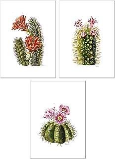 Todo Bien Design Inc Home Office Wall Decor Boho Plants Floral Animal Watercolor Modern..