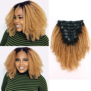 Sassina Two Tone Blonde Afro Curly Clip in Human Hair Extensions for Black Women Double Wefts Ombre Natural Black Fading to Honey Blonde 120 Grams 7 Pieces with 17 Clips TN27 12 Inch