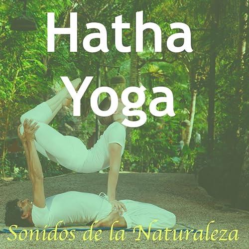 Música para Posiciones de Hatha Yoga: Sonidos de la ...