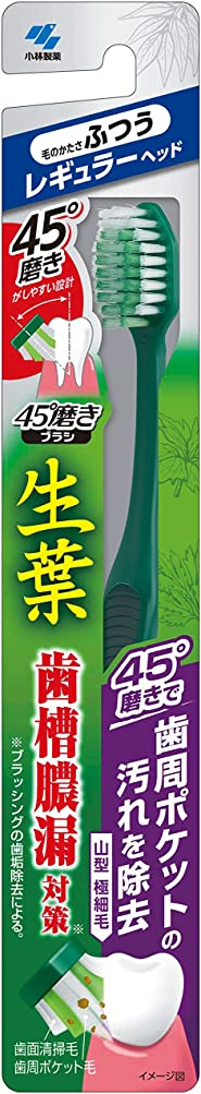 文字通り大破粉砕する小林製薬 生葉45°磨きブラシ 歯周ポケットの汚れを除去 レギュラー ふつう