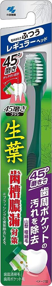 作業大洪水鷲小林製薬 生葉45°磨きブラシ 歯周ポケットの汚れを除去 レギュラー ふつう