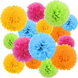 Livder Paper Flowers Bright Colorful Tissue Paper Pom Poms for Party Birthday Wedding Christmas Festive Decorations, 15 Pi...