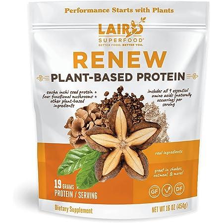 Laird Superfood Renew Plant-Based Protein Powder - Sacha Inchi Unflavored Vegan Protein Shake, 16 oz Bag