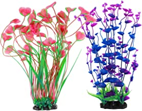 Best underwater plants for fish tanks Reviews