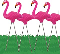 Best flamingo cake candles Reviews