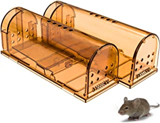 Best humane mouse trap buy Reviews