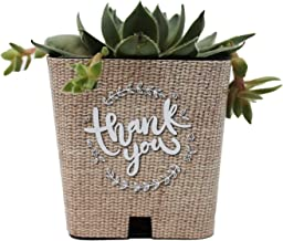 PRODUCT80 Burlap Print Succulent Wraps Wedding Favors for 2
