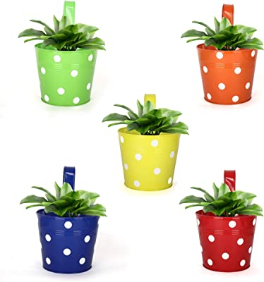 Homspurts Dotted Round Railing Planters,Rust-Free Hanging Planter,Pot/Buckets for Hanging in Balcony/Home/Garden Decor (Multicolour, Pack of 5)