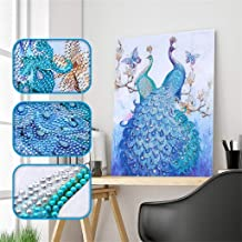 ?? AIUSD Clearance ??, Special Shaped Diamond Painting DIY 5D Partial Drill Cross Stitch Kits Crystal R