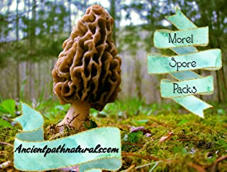 Morel Mushroom Spore Growing Kit 3 Pack – Best Outdoor Morel Mushroom Growing Kit - Grow The Most Desirable Mushrooms Oudoors - No Experience Required - 100% Cruelty Free