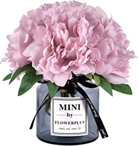Martine Mall Artificial Peony Flowers with Vase, Fake Peony Flowers Faux Flowers Arrangements for Home Decor