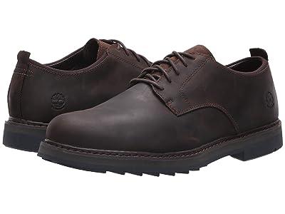 Timberland Squall Canyon Plain Toe Waterproof Oxford (Dark Brown Full Grain) Men