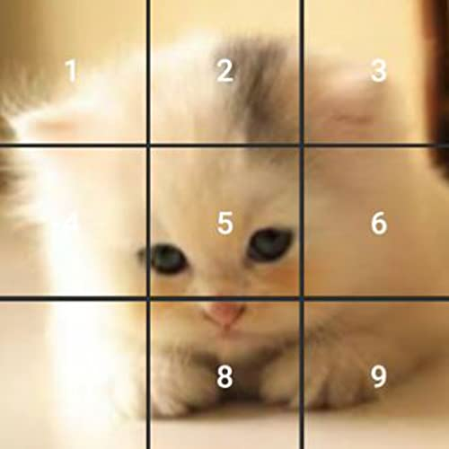 Cute Cats Jigsaw And Slide Puzzle Game