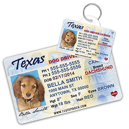 Personalized Dog: Amazon com