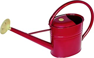 Best metal watering can rose Reviews
