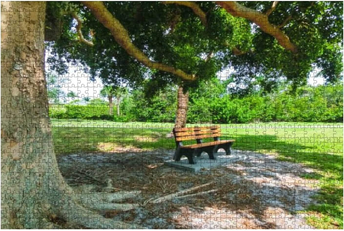 1000 Pieces-Scenic Max 45% OFF View of Bench and Park Be Naples a Florida in Bombing free shipping