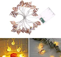 FFX Novelty Lighting Home Interior Decoration Atmosphere String Lights LED Conch Decorative Lantern, Specification:6m 40 L...