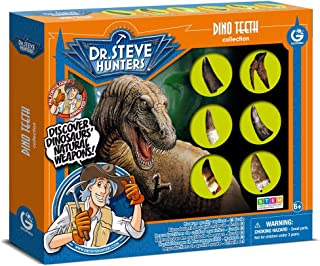 Uncle Milton 6 Piece Dr. Steve Hunters Dino Teeth Replica Collection Scientific Educational Toy