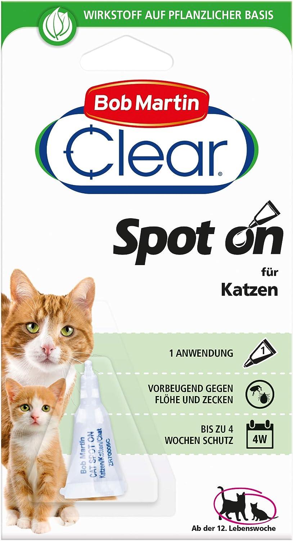Bob Martin G8 Spot on für Katzen 8 Wochen  Amazon.de Haustier
