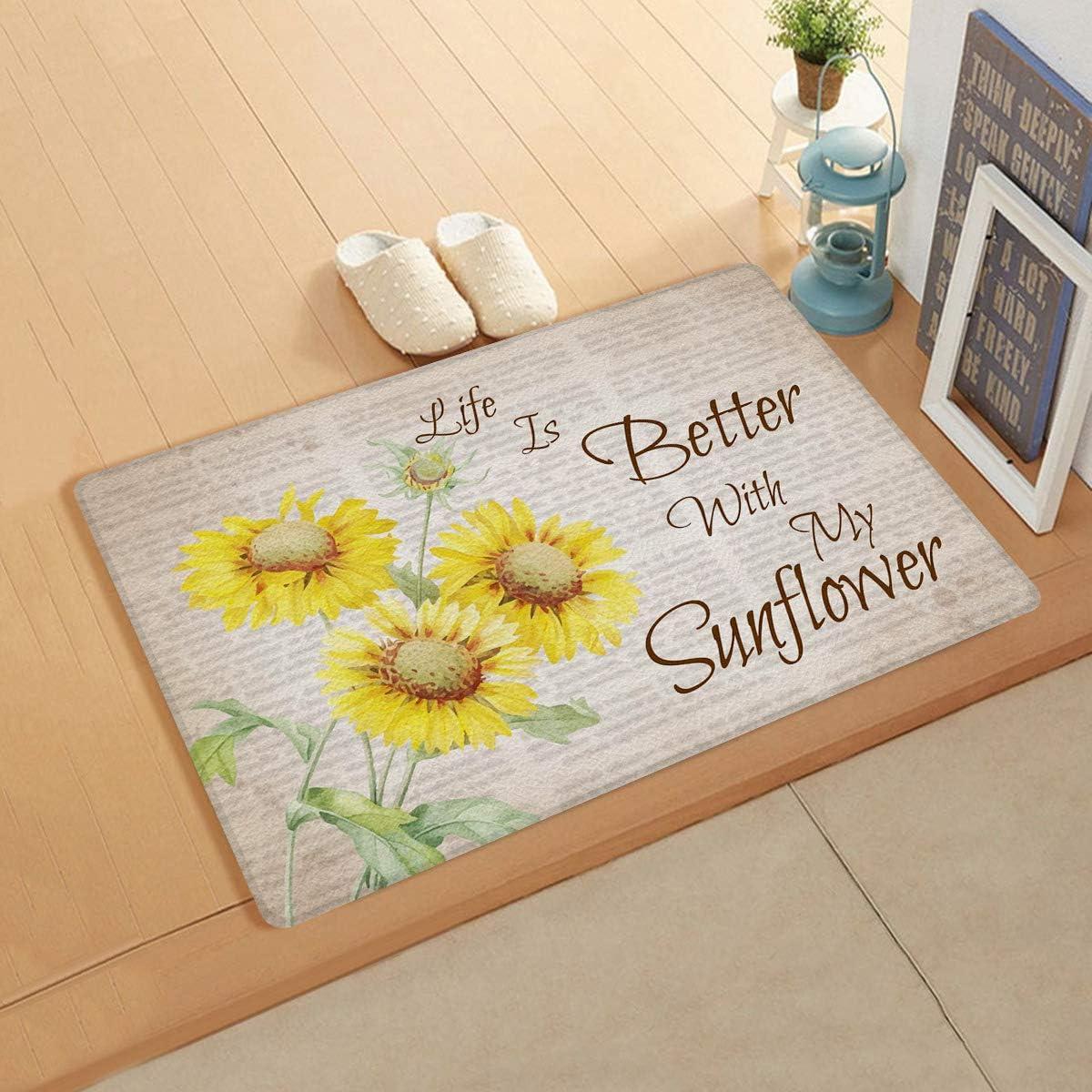 EwdeWwo Indoor Doormat Ranking integrated 1st place List price Welcome Door Mat Retro 48