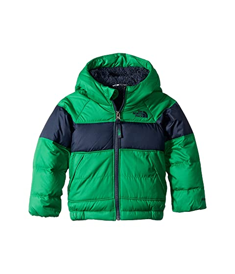 The North Face Kids Moondoggy 2.0 Down Jacket (Toddler) at Zappos.com ee96bd1fd
