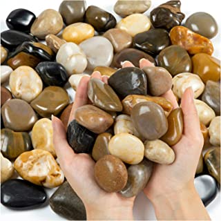 KXCOFTXI Rocks for Succulent Plants, 3.3 Lbs Indoor Potted Color Pebbles, Suitable for Aquarium Fish Tanks, Garden Roads, ...
