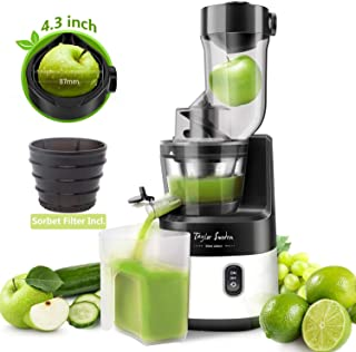 Slow Masticating Juicer Machine, 55RPM Cold Press Juice Extractor 3.4inch Wide Mouth Big Feed Chute for Vegetable Fruit Sorbet