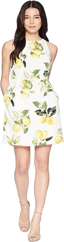 Adrianna Papell Petite Fresh Lemon A-Line Dress