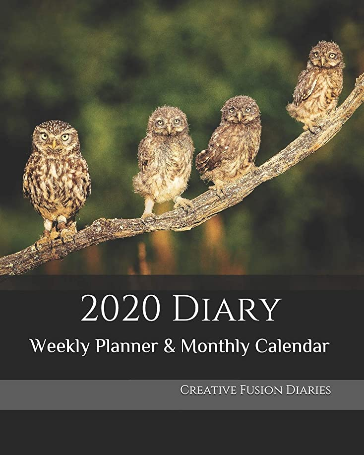 壊す自発的メキシコ2020 Diary: Weekly Planner & Monthly Calendar - Desk Diary, Journal, Owls, Little Owl, England, English Wildlife, Birds -  8x10