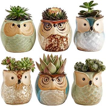 Sun-E 2.5 Inch Owl Pot Ceramic Flowing Glaze Base Serial Set Succulent Plant Pot Cactus Plant Pot Flower Pot Container Planter Bonsai Pots with A Hole Idea 6 in Set