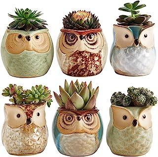 Best Sun-E 2.5 Inch Owl Pot Ceramic Flowing Glaze Base Serial Set Succulent Plant Pot Cactus Plant Pot Flower Pot Container Planter Bonsai Pots with A Hole Idea 6 in Set Review