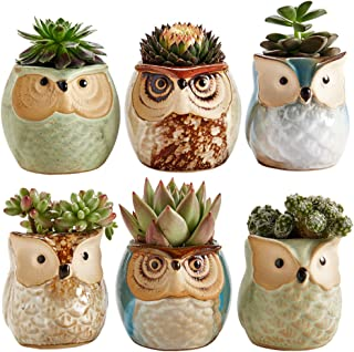 Sun-E 2.5 Inch Owl Pot Ceramic Flowing Glaze Base Serial Set Succulent Plant Pot Cactus..