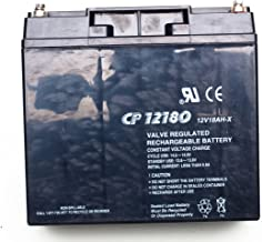 Briggs & Stratton 193043GS Battery Replaces 4489GS