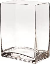 WGV Clear Rectangle Block Glass Vase, 4 by 6 by 8-Inch