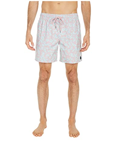 RVCA Club Elastic (Pale Mauve) Men