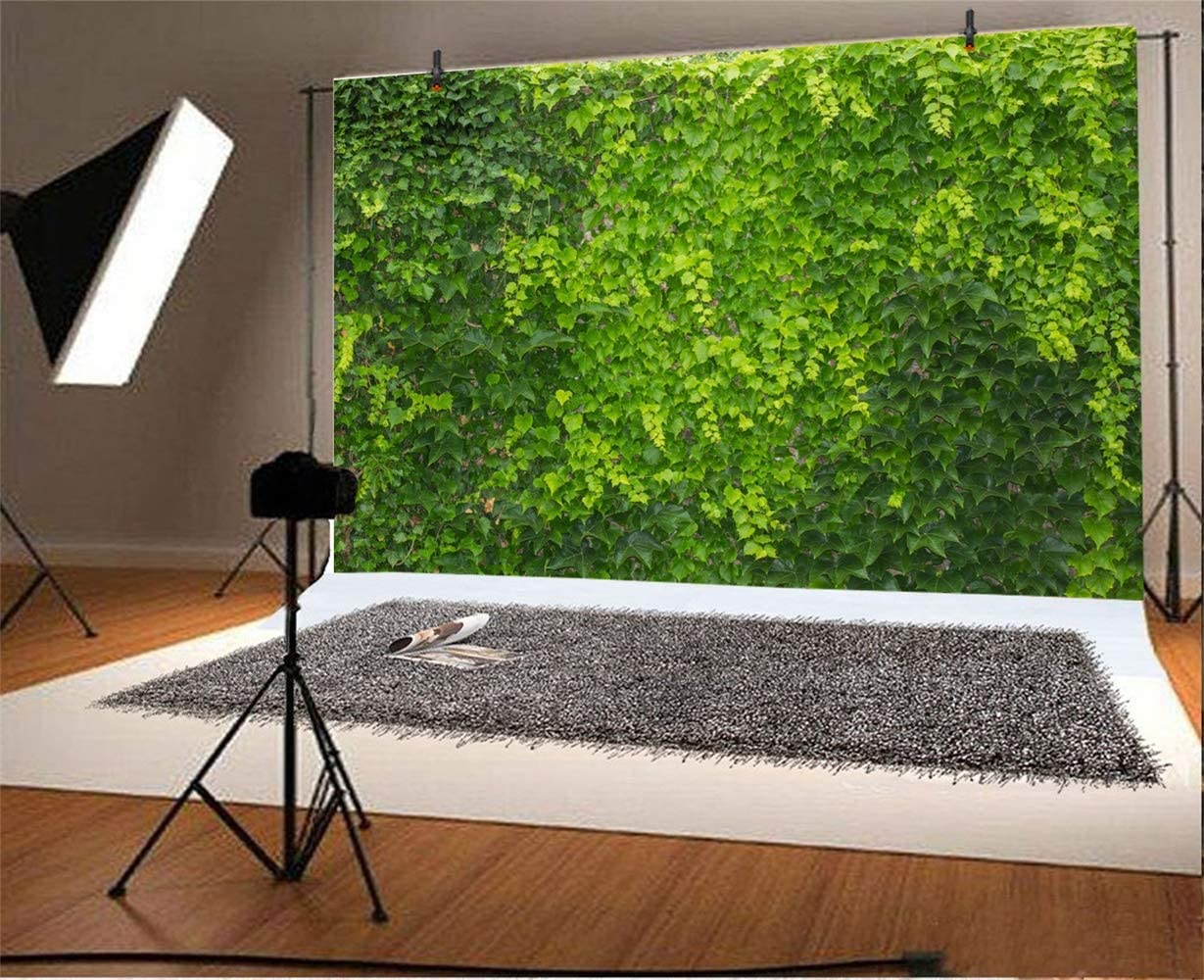 SZZWY 10x7ft Dusk Park Scenic Vinyl Photography Background Sunset Lush Forest Trees Green Grassland Backdrop Spring Scenic Indoor Decoration Landscape Wallpaper Studio Props