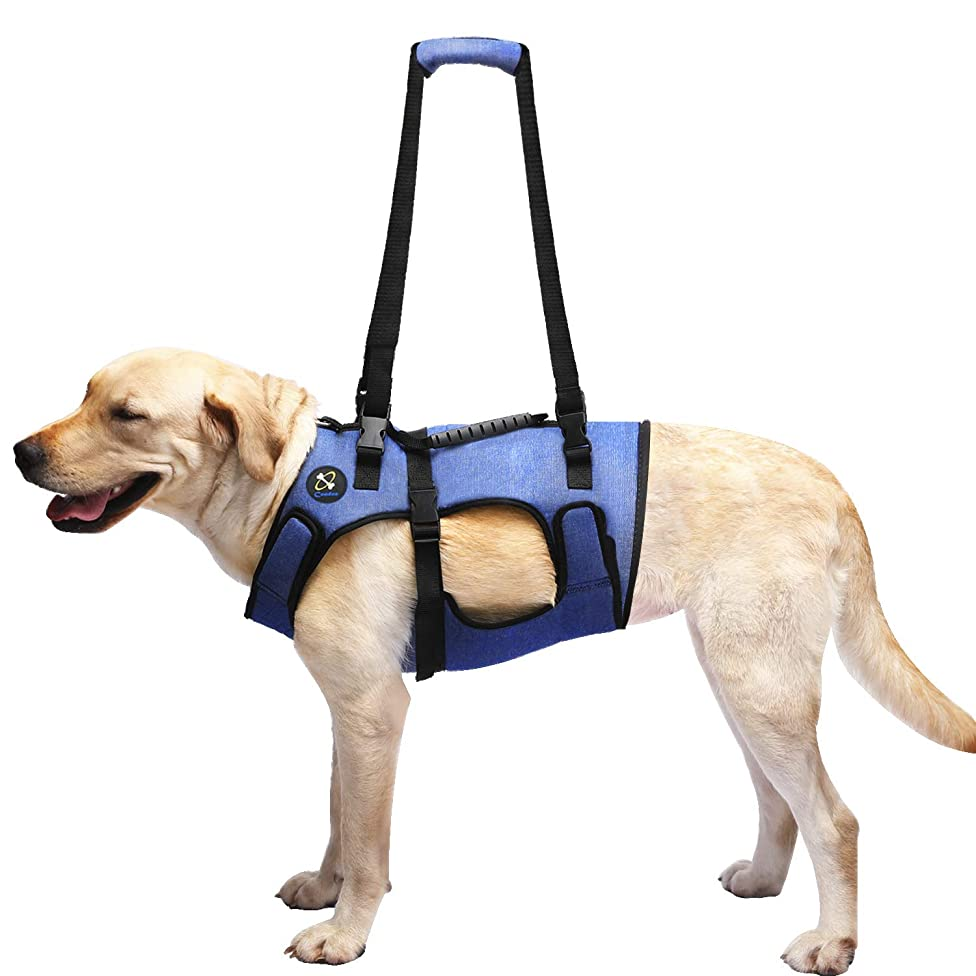 Coodeo Dog Lift Harness, Support & Recovery Sling, Pet Rehabilitation Lifts Vest Adjustable Breathable Straps for Old, Disabled, Joint Injuries, Arthritis, Paralysis Dogs Walk