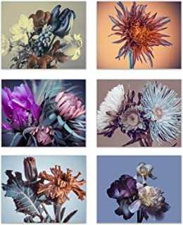 Infinity Creations Flower Elegance Home Wall Decor: A Modern Illustration of Flower Bouquets/Buds. Bring in The Beauty of Flowers All Year Long-Set of 6 Unframed Photos (8