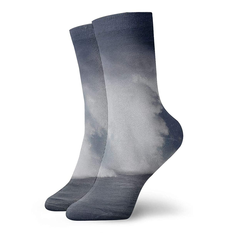 WEEDKEYCAT Hawaii Wave Rabbit Kite Adult Short Socks Cotton Classic Socks for Mens Womens Yoga Hiking Cycling Running Soccer Sports