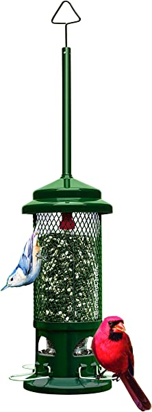 Squirrel Buster Standard Squirrel Proof Bird Feeder W 4 Metal Perches 1 3 Pound Seed Capacity