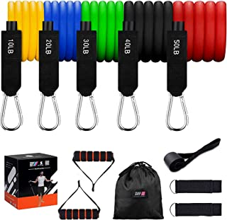 ShapEx Resistance Exercise Bands Set, resistance bands with handles, Door Anchor, Ankle Straps,Carry Bag and Workout Guide...