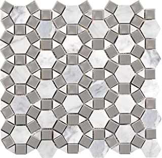 Emser Tile M05WINTFR1213MGM Winter Frost Gem Mo/1212 Ceramic Tiles
