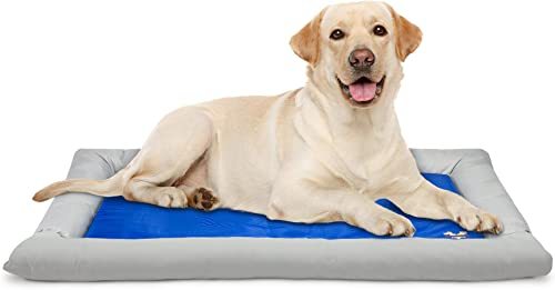 discount Arf Pets Dog Self Cooling Bed Pet Bed – Solid Gel Based new arrival Self Cooling Mat for Pets, Includes a Foam Based Bolster Bed for new arrival Extra Comfort sale