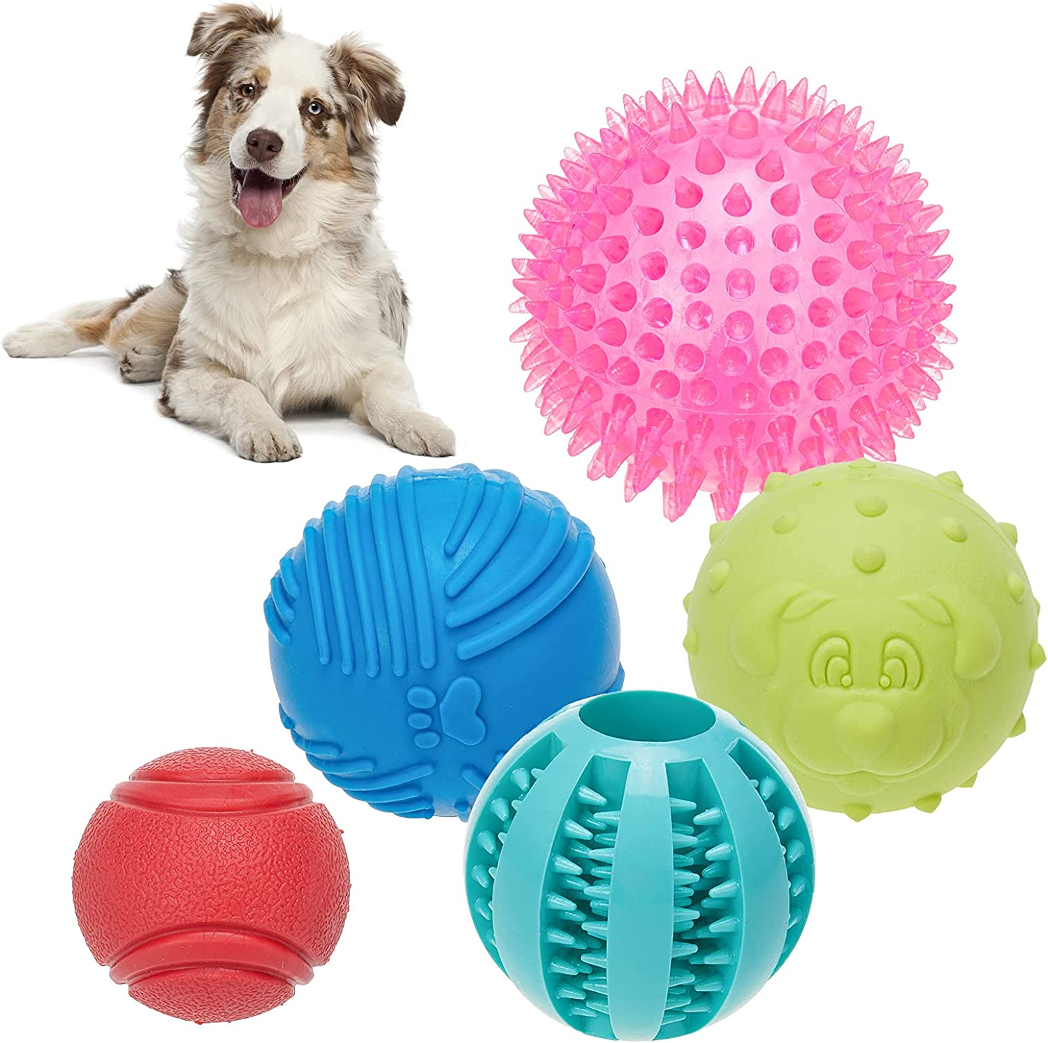 BINGPET Interactive Dog Ball Toys 5 Packs in 1 Set, Functional Pet Rubber Balls, Squeaky Spike Ball, Dog Treat Balls Food Dispensing Toy, Solid Rubber Chew Ball, Fit for Small Medium Large Dogs