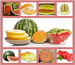 sweet cantaloupe varieties