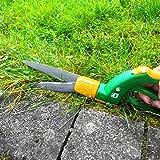 Immagine 2 forbici taglia erba prato giardino