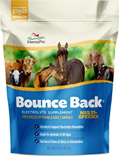 Best bounce back manna pro Reviews