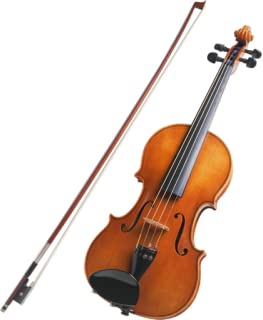 Violin Learning Lessons
